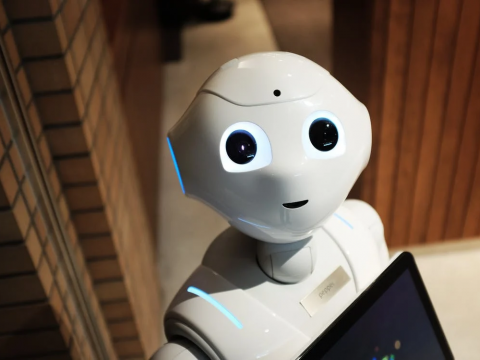 A robot looking into the camera